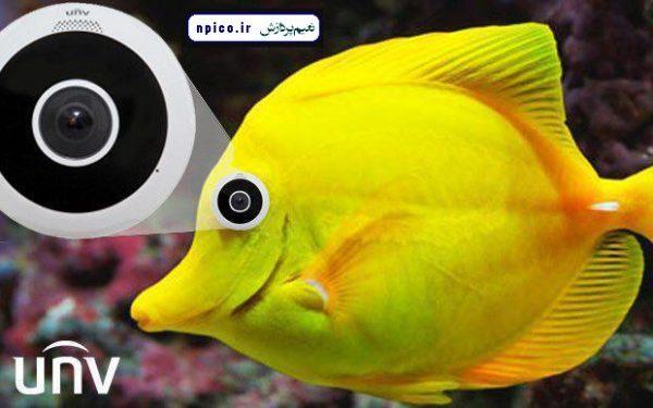پخش و فروش عمده دوربین مداربسته فیش آی FISH EYE نعیم پردازش npico.ir دوربین fisheye